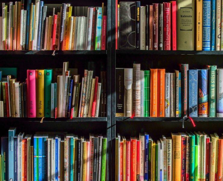 Književni prevajalec je pozoren in radoveden bralec.