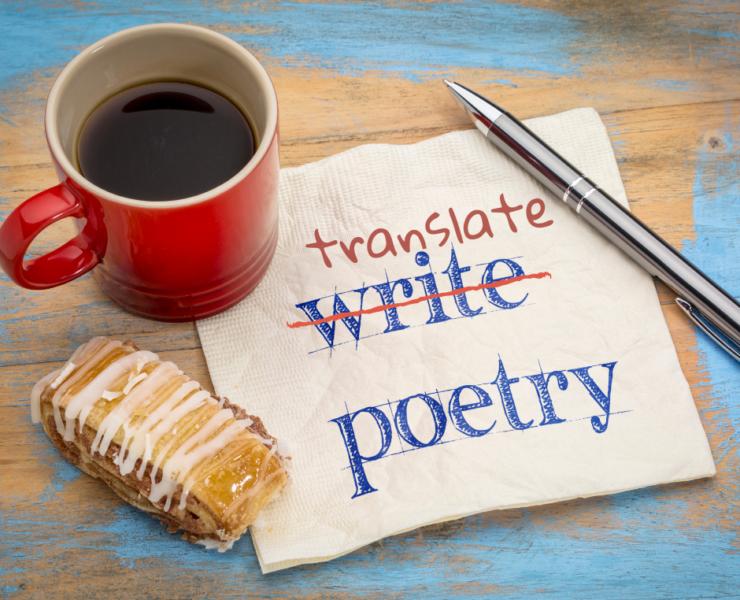 Pesniška prevajalska delavnica DSP